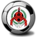 rayyan_logo